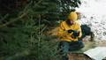 男 フラスコ 森林の動画 37383675