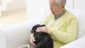 老人 犬 男性の動画 37405650
