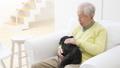 老人 犬 男性の動画 37405652