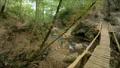 A man walks along a wooden bridge over a river and 37499344
