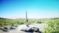 Nuclear ballistic rocket, complex. Launch rocket 37506095