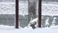 雪が降る フィクス 37591401