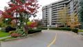 Building apartment. Canada. 37677031