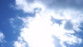 太陽 日光 日差しの動画 37762214