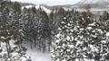Snow scene 3 37874017