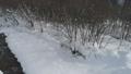 Snow scene 4 37874018