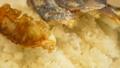 焼き餃子とご飯❤︎  38286261