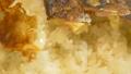 餃子と白飯❤︎ 38286351