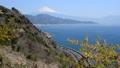 さった峠からの風景-6105670 38397626
