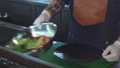 Cropped shot of a chef putting salad on a plate 38406576