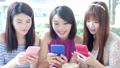 亚洲 亚洲人 女性 38511173