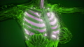science anatomy scan of human lungs glowing 38517271