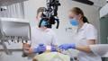 器具 歯科 医者の動画 38527806