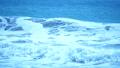 伊良湖岬 海 波の動画 38633403