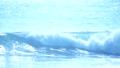 伊良湖岬 海 波の動画 38633426