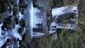 山涧 山溪 枫树 38635520