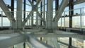 福岡タワー_高速エレベーター(キャノンフルサイズ一眼5DSRで撮影) 38708571