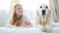 dog,animal,child 38815883