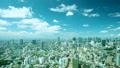 東京 空撮 空の動画 38853216