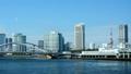 東京 橋 東京タワーの動画 38862778