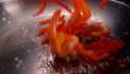 food,seafood,shrimp 38886910