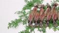 อาหารทะเล,โทยาม่า,ครัว 39014239