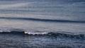 江の島の海と波 39019780