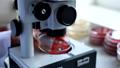 Medical Laboratory 39281961