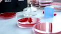 Medical Laboratory 39281962