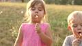 子 子供 Dandelionの動画 39287794