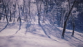 霧氷 樹氷 冬の動画 39394821