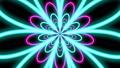 バックグラウンド お花 フラワーの動画 39425293