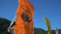 Indian flags in the wind at yoga vacation camp 39494213