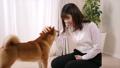 ペット(柴犬と若い女性) 39514120