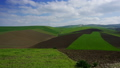 Agriculture fields on hills in Morocco, timelapse 39514737