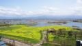 春の福島潟(タイムラプス撮影) 39918268