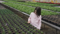 Pretty smiling girl walks in greenhouse, looks and touches flower pots 39972457