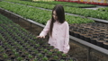 Pretty smiling girl walks in greenhouse, looks and touches flower pots 39972461