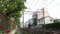 Railroad scenery Odakyu romance car 40012691