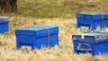 養蜂箱 40030737