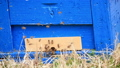 養蜂箱 40030738