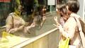 窗口購物看商店顯示的婦女 40095409