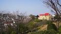 満開の桜のある風景 40111199