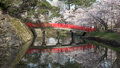 桜咲く弘前城 鷹丘橋 FIX 40167187