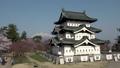 桜咲く弘前城 天守閣 パン 40167195