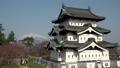 桜咲く弘前城 天守閣 ズームアウト 40167196