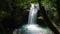 清流 風景 自然の動画 40170807