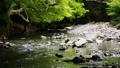清流 川 風景の動画 40170900
