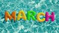 单词 三月 3月 40229687