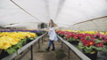 flowers, girl, floriculture 40324517